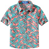 SSLR Big Boy's Flamingos Button Down Casual Short Sleeve Hawaiian Shirt (Small(8), Green)