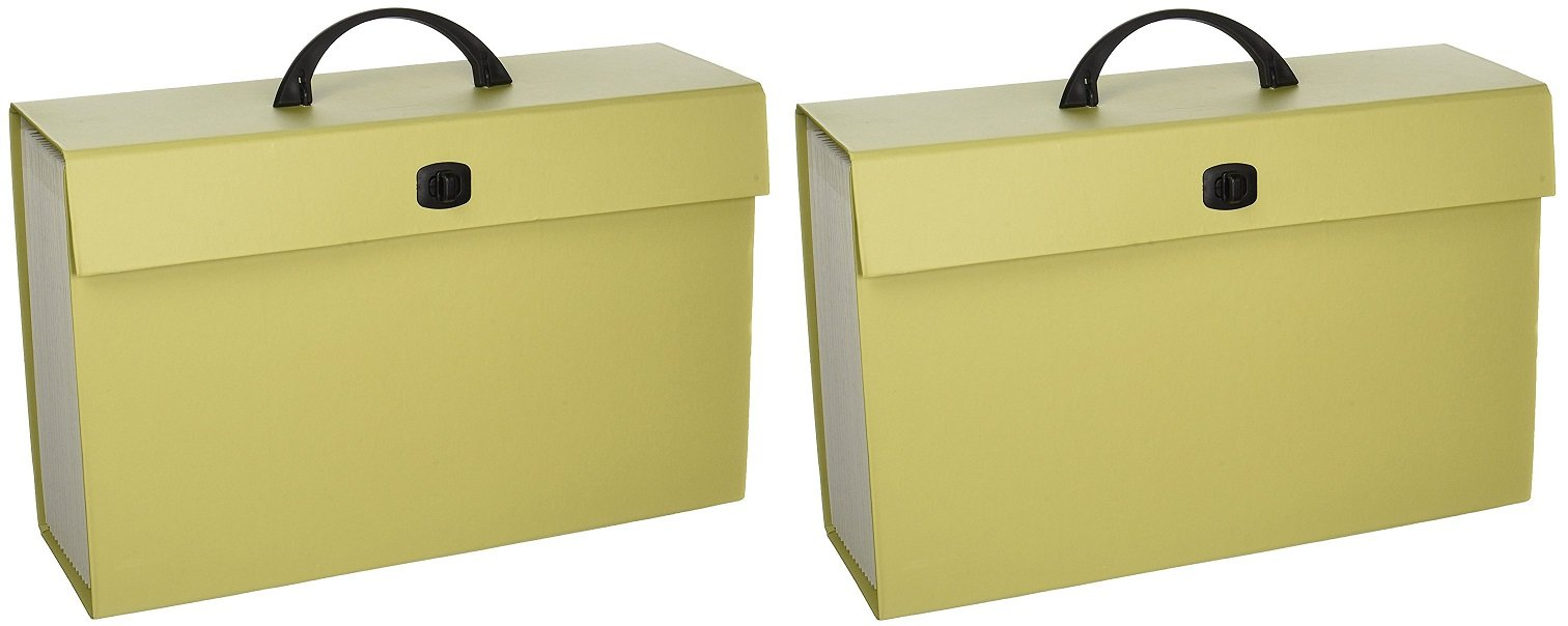Smead Portable Expanding File Box, 19 Pockets, Alphabetic (A-Z) and Subject Labels, Handle and Closure, Legal, 1 Count, Color Varies (70806) (Pack of 2)