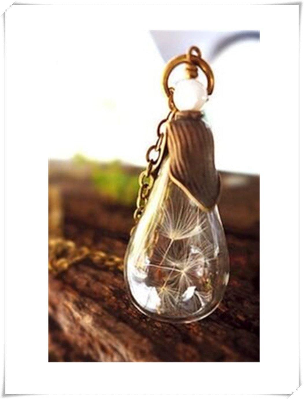 Botella de cristal collar, luz bombilla arte, diente de león Desea ...