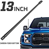 Rydonair Antenna Compatible with Ford F150 2009-2020 | 13 inches Flexible Rubber Antenna Replacement | Designed for Optimized