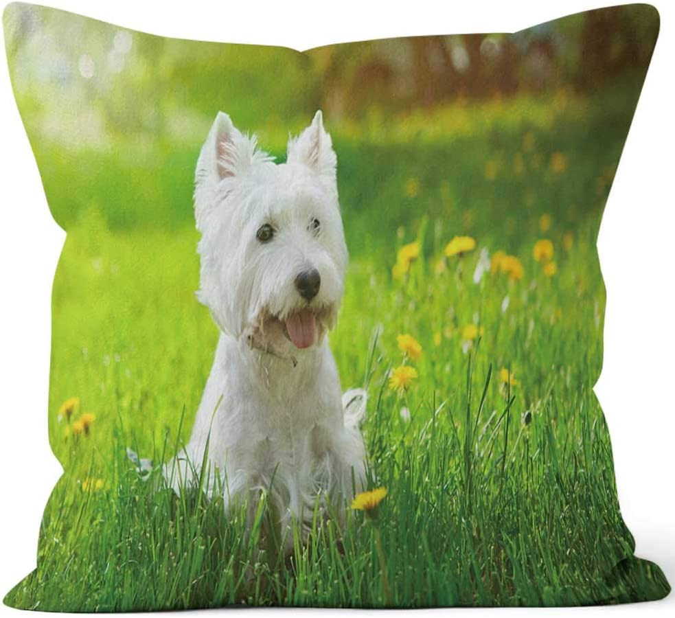 """Nine City Small Westie in a Field of Yellow Flowers Home Decorative Throw Pillow Cover,HD Printing Square Pillow case,16"""" W by 16"""" L"""
