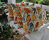 Set of 4 Indoor / Outdoor 20'' Square Throw Pillows ~ Orange Blue Yellow Green Ash Hill Garden Birds & Matching Geometric Flame 20'' Pillows
