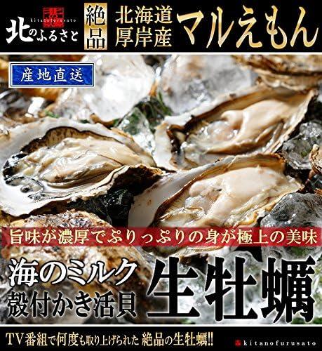 北海道 厚岸産 「マルえもん」 生牡蠣 殻付き LLサイズ × 20個 カキナイフ ・ 軍手付 【産地直送】 (120~150g未満/個) 48時間オゾン・紫外線殺菌処理を施してあるので、安心・安全の品質です。一年中生で...