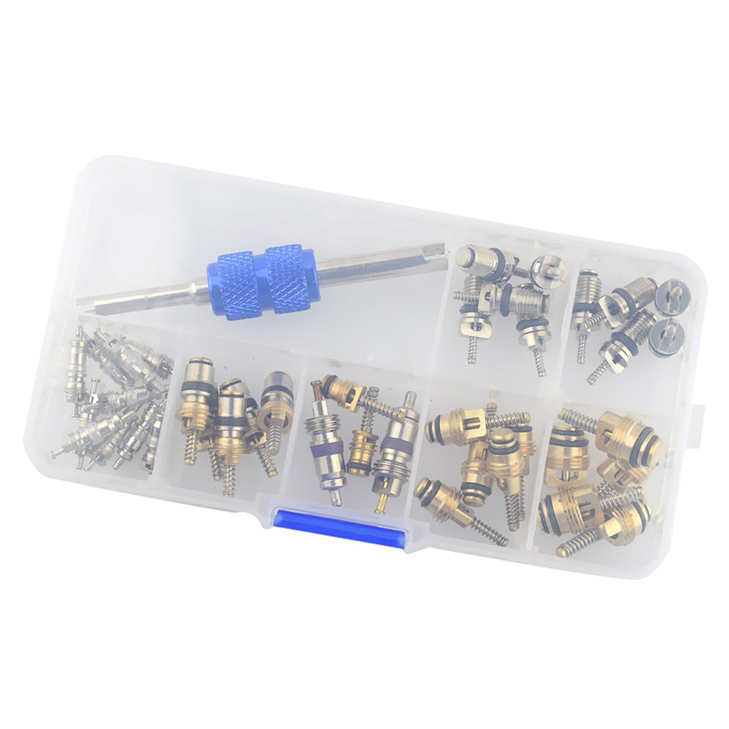 Jili Online 40 Pieces Truck R12 R134 Air Conditioning A//C Valve Core/&Remover Assortment Kit