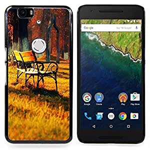 - Sunset Lounge Chair Beautiful Nature 26/ Hard Snap On Cell Phone Case Cover - Cao - For Huawei Nexus 6P