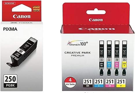 Amazon.com: Canon PGI-250 cartuchos de tinta (6497B001) CLI ...