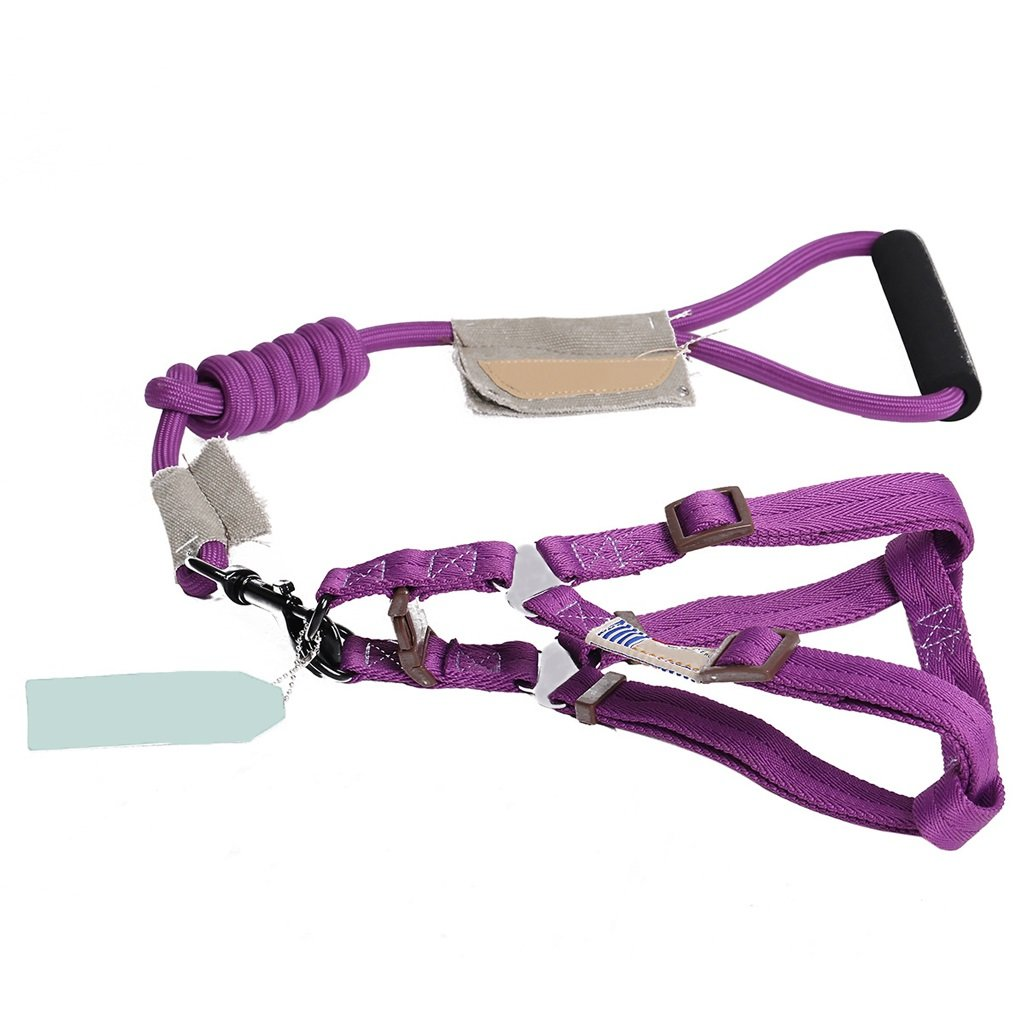 PURPLE S PURPLE S Pet Harness, Chest Strap, Traction Rope, Round Rope, Small, Medium, Large Dog, Dog Leash, Dog Chain, Dog Rope, Pet Supplies (color   Purple, Size   S)