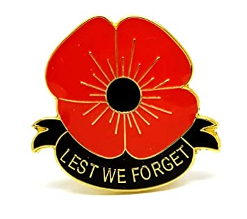 Lest we forget remembrance badge pin brooch amazon sports lest we forget remembrance badge pin brooch mightylinksfo