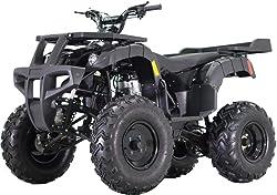 TaoTao Adult Size Rhino 250 ATV