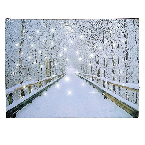 Collections Etc Lighted White Fiber Optic Snowy Winter Road