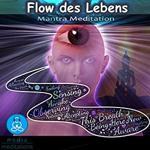 Flow des Lebens Hörbuch