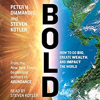 bold how to go big make bank and better the world