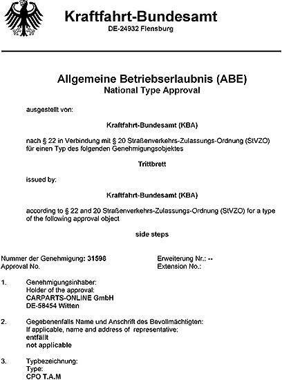 Carparts Online 29771 Alu Trittbretter Flankenschutz Oe Style Mit Abe Auto