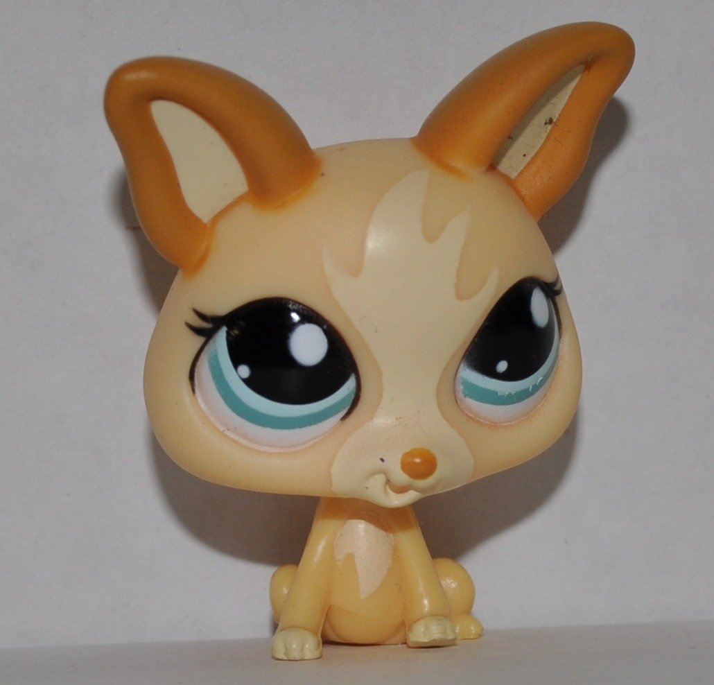 Loose Chihuahua #1656 OOP Out of Package /& Print Littlest Pet Shop Retired Collector Toy LPS Collectible Replacement Single Figure