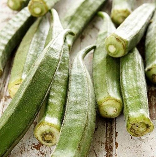 Okra Clemson Spineless 17.5K Seeds, or 2 Pounds Top Quality Easy Heirloom 51C (17.5K Seeds, or 2 Pounds) by Zellajake Farm and Garden