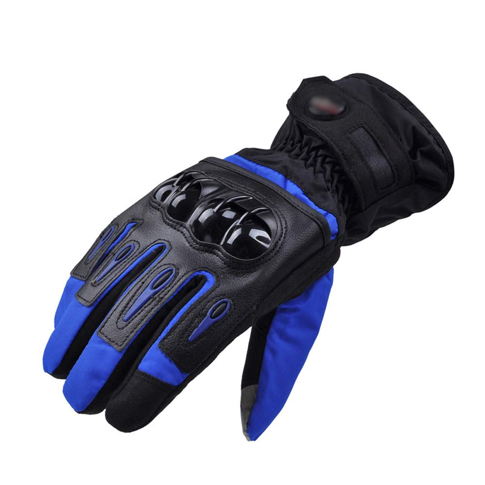 ZDYLL Men Leather Skiing Gloves Touch Screen Warm Thick Ski Gloves Outdoor Waterproof Motorcycle Riding Snow Snowboard Glove (Color : Blue, Size : L) by ZDYLL
