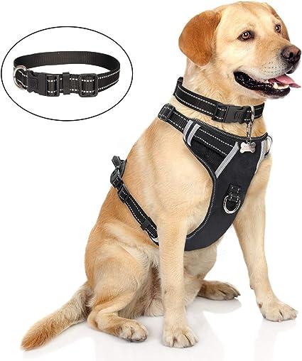 ORANGE M PET CONTROL HARNESS DOG CAT SOFT USA MESH WALK SAFETY STRAP COLLAR VEST