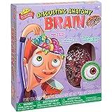 Scientific Explorer Disgusting Anatomy Brain