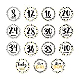 Pearhead Pregnancy Stickers, Track Your Growing Baby Bump, Photo Sharing Prop Stickers, White