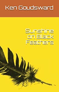 Sunshine on Black Feathers