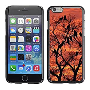 Print Motif Coque de protection Case Cover // F00000003 la puesta del sol sereno atardecer al // Apple iPhone 6 6S 6G 4.7""