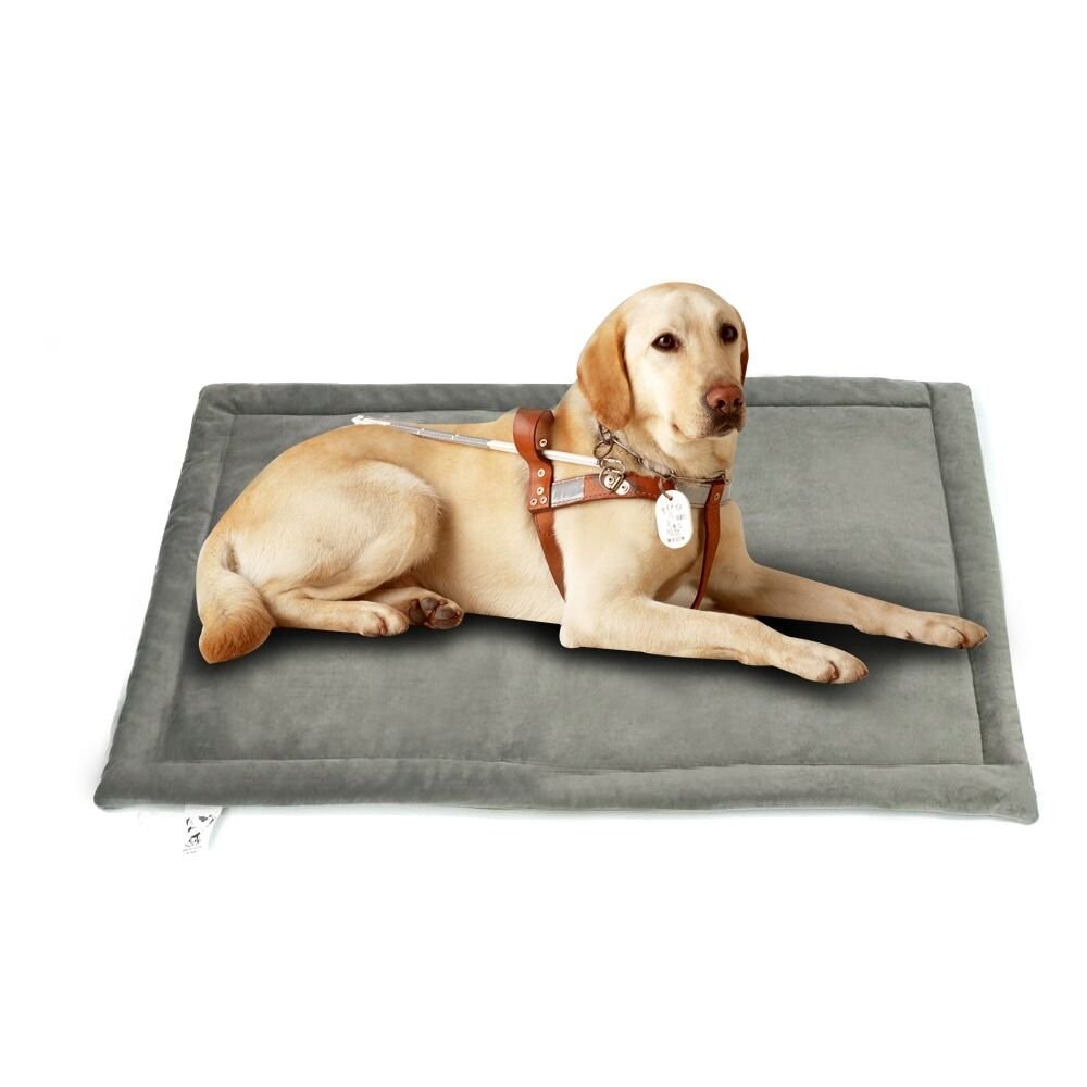 Comforhome Indoor and Outdoor Sleeping Mat Dog Bed Soft Velvet Anti-slip Machine Washable Pad (29 inch by 21 inch, Dark Gray)
