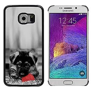 Shell-Star Arte & diseño plástico duro Fundas Cover Cubre Hard Case Cover para Samsung Galaxy S6 EDGE / SM-G925 / SM-G925A / SM-G925T / SM-G925F / SM-G925I ( Cute Dog German Sheppard Puppy )