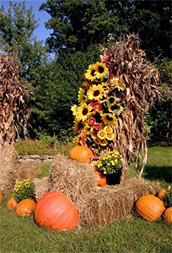 CSFOTO 4x6ft Background for Scenic Autumn Haystack Photography Backdrop Straw Bale Flower Agriculture Bale Display Harvested Halloween Farmers Rural Countryside Photo Studio Props -