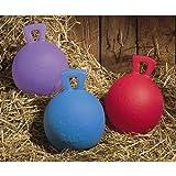 Jolly Ball Toy – 6″, My Pet Supplies