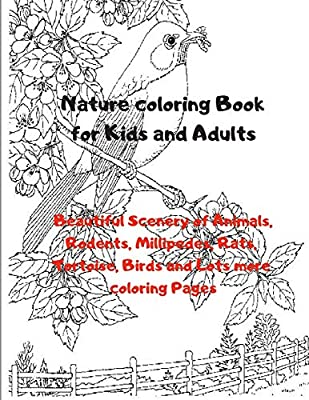scenic coloring pages | beautiful scenery colouring pages (page 2 ... | 400x309