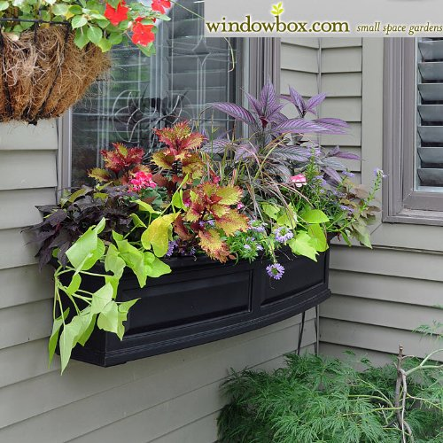 Presidential 60 Inch Window Box - Black by Windowbox