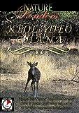 Nature Wonders - Keoladeo Ghana - India