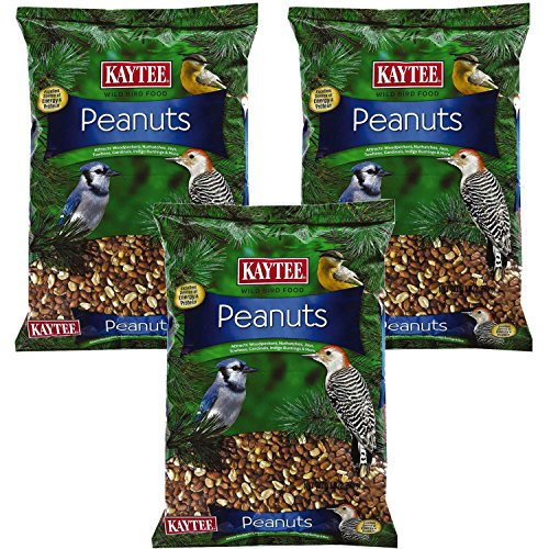 Kaytee Peanuts for Wild Birds, 10-Pound, 3-Pack by Káytee
