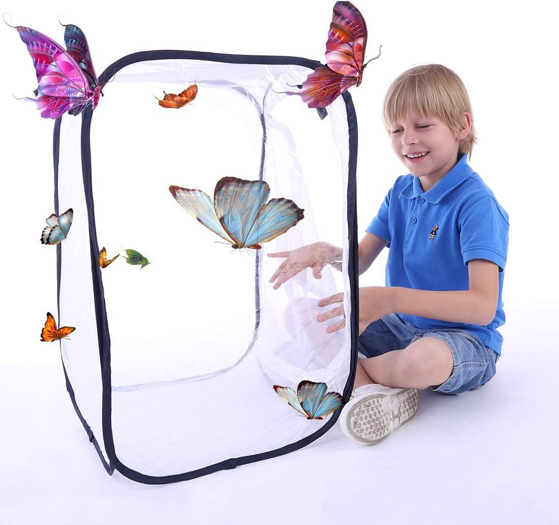 und Schmetterling K/äfig Schmetterling Habitat f/ür Kinder//Kleinkind fangen Grillen//Leuchtk/äfer Macium Schmetterlinge Z/üchten Pop-Up Insekten 40 x 40 x 60cm