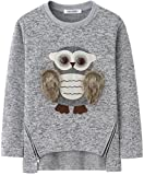 Image of AuroraBaby Little Big Girls Sweatshirts Adorable Fuzzy Owl Pullover Long Sleeve Lining Fleece Size 11-12
