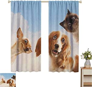 Wear Pole Curtains Blackout Curtain Cat and Dogs Domestic Home Pets Friends Cute Hilarious Expressions Sky Clouds Collage Multicolor Bedroom with Dark Curtain Set of 2 Panels W55 x L39