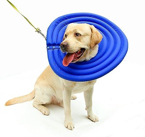 Morezi Collar para Mascotas Elizabethan Anti mordeduras para Perros y Gatos con Capucha Protectora antiarañazos para