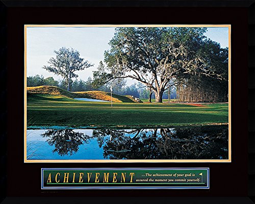 Framed Wall Art Print Achievement: Golf 29.38 x 23.38