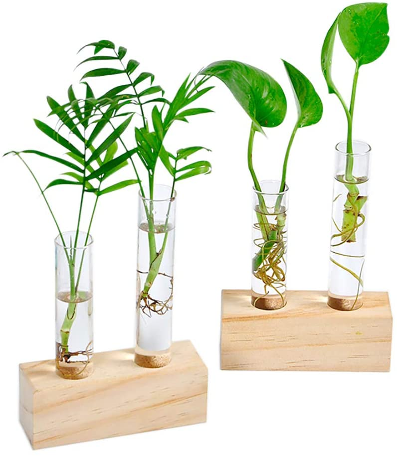 Crystal Glass Test Tube Vase in Wooden Stand Flower Pots For Hydroponic Decors