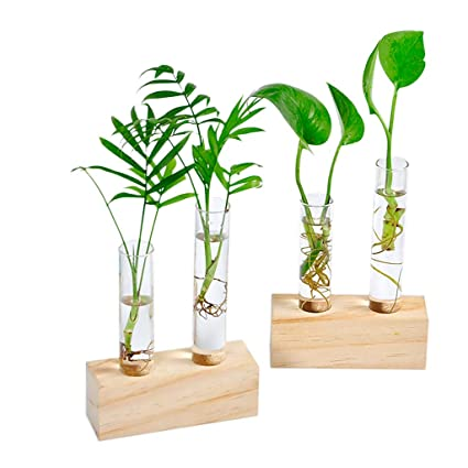 Tube office Pag Amazoncom Ivolador Crystal Glass Double Test Tube Vase In Wooden Stand Flower Pots For Hydroponic Plants Office Home Decoration Garden Outdoor Art For Dentists Amazoncom Ivolador Crystal Glass Double Test Tube Vase In Wooden