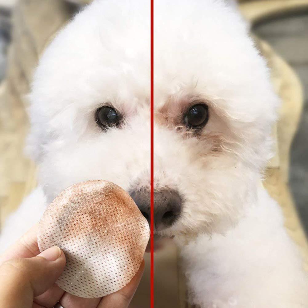 Hemore - 100 toallitas de algodón húmedo para Mascotas con Base hipoalergénica, Uso Multiusos para Eliminar Las Manchas de Piel causadas por Las lágrimas de ...