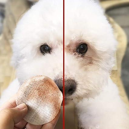 Hemore - 100 toallitas de algodón húmedo para Mascotas con Base hipoalergénica, Uso Multiusos para