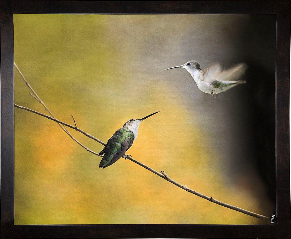 10.75x13.25 Frame USA Whisper Your Wings Hummingbirds-JAIJOH139949 10.75x13.25 Jai Johnson in a Cafe Espresso Print