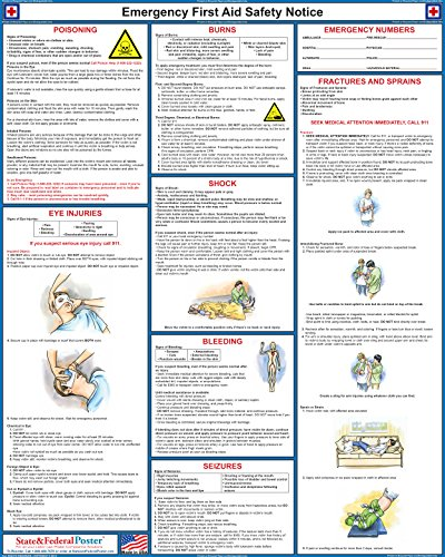 First Aid Poster - Laminated 24