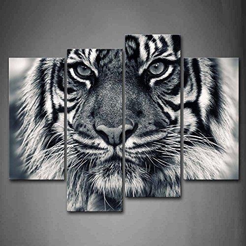 First Wall Art Cuadro de Pared con diseno de Tigre Blanco y Negro con Ojos Mirando y Barba, impresion de imagenes sobre Lienzo, Animales, la Imagen para