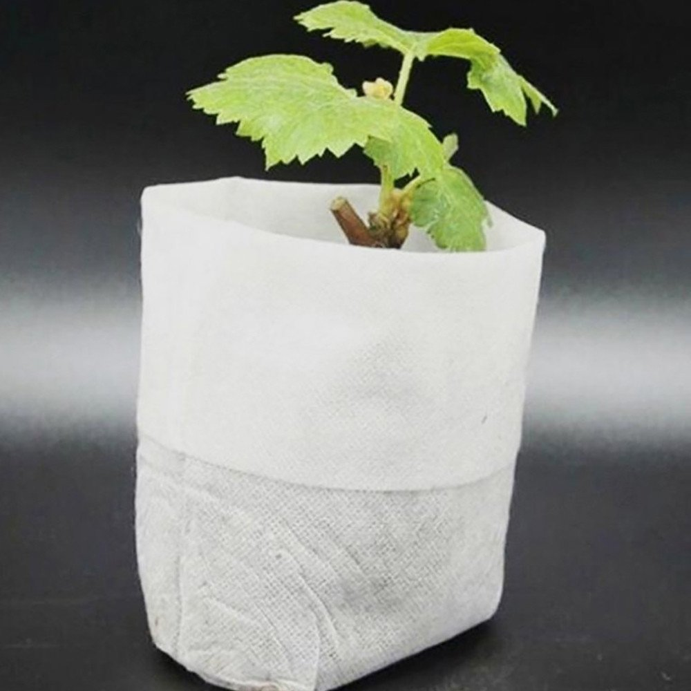 100 Pcs Seeding Nursery Pot Seed-Raising Bags Non-Woven Fabrics Biodegradable Nursery Grow Bags White 8cm x10cm (White)