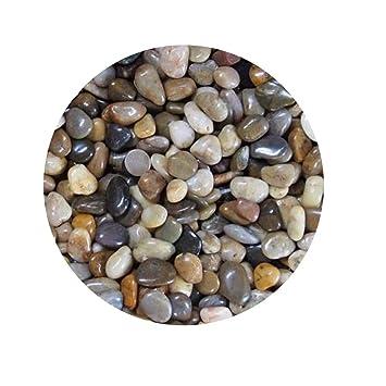 TELLW - Piedra de Masaje para pecera de jardín, con Piedras pulidas de 1 a 2 cm: Amazon.es: Hogar