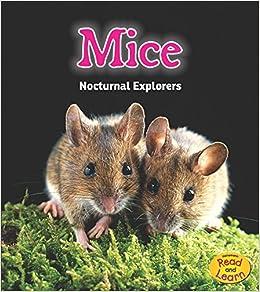 Book Mice: Nocturnal Explorers (Night Safari)