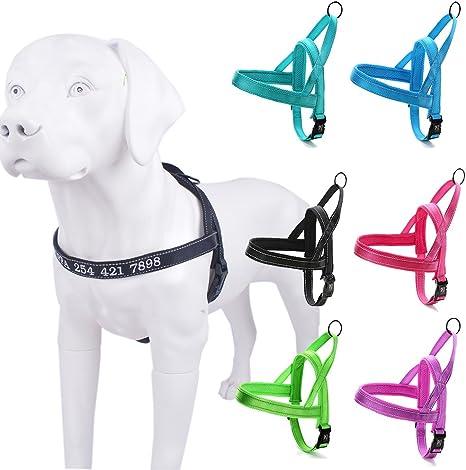 Arnes para perros personalizados