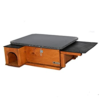 Caseta para erizo de color marrón dorado con o sin accesorio de comedero: Amazon.es: Jardín